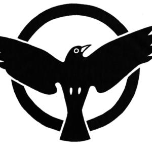 KFBlackbird Logga